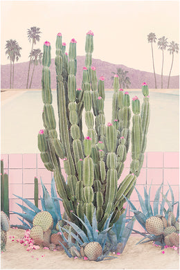 Cactus Springs - Limited Edition Fine Art print
