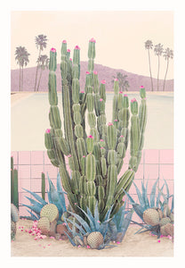 Cactus Springs - Limited Edition Fine Art