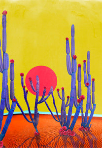 Cactus Sunset - Limited Edition Fine Art