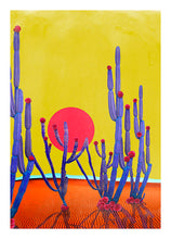Load image into Gallery viewer, Cactus Sunset - Limited Edition Fine Art