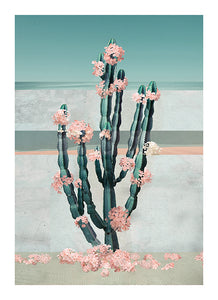 Cactus Dream - Limited Edition Fine Art