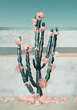Load image into Gallery viewer, Cactus Dream - Limited Edition Fine Art