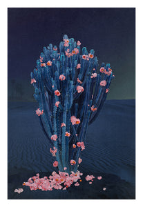 Cactus Nights - Limited Edition Fine Art