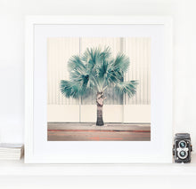 Load image into Gallery viewer, Palm Park - Limited Edition Fine Art