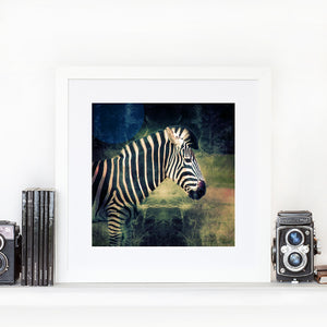 Zebra Cinema - Limited Edition Fine Art