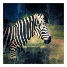 Load image into Gallery viewer, Zebra Cinema - Limited Edition Fine Art