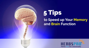5 Tips to Speed up Your Memory and Brain Function: