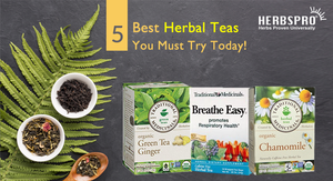 5 Best Herbal Teas You Must Try Today!