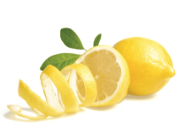Active Botanical Ingredients - Valentino Haircare - Lemon Peel