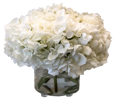 Nature • Hydrangea in Footed Glass (White)