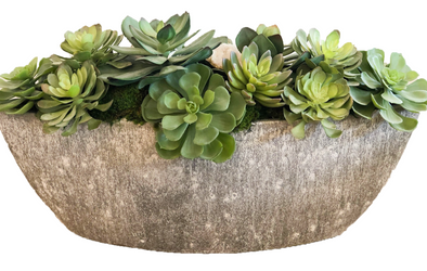 Nature • Custom Echeveria Succulent Cement Boat with Crystals