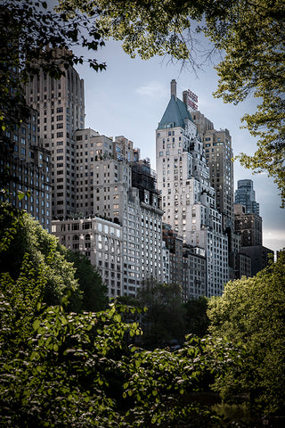 View from Central Park to Apartment towers in New York.