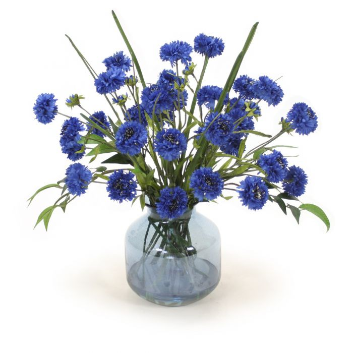 Blue Cornflower in Blue Vase