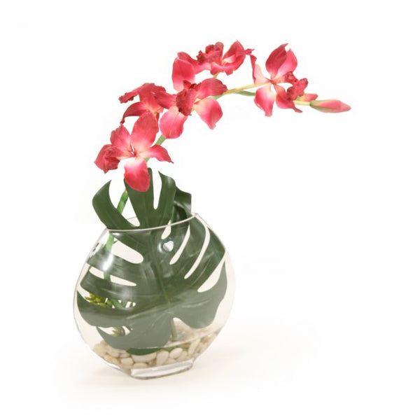 Distinctive Designs Home Burgundy Orchid in Disk Vase