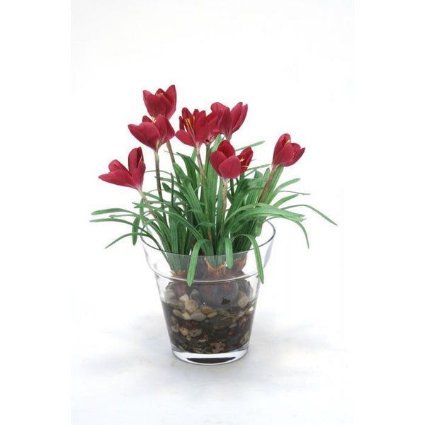 Distinctive Designs Home Waterlook® Mauve Crocus in Glass Flower Pot