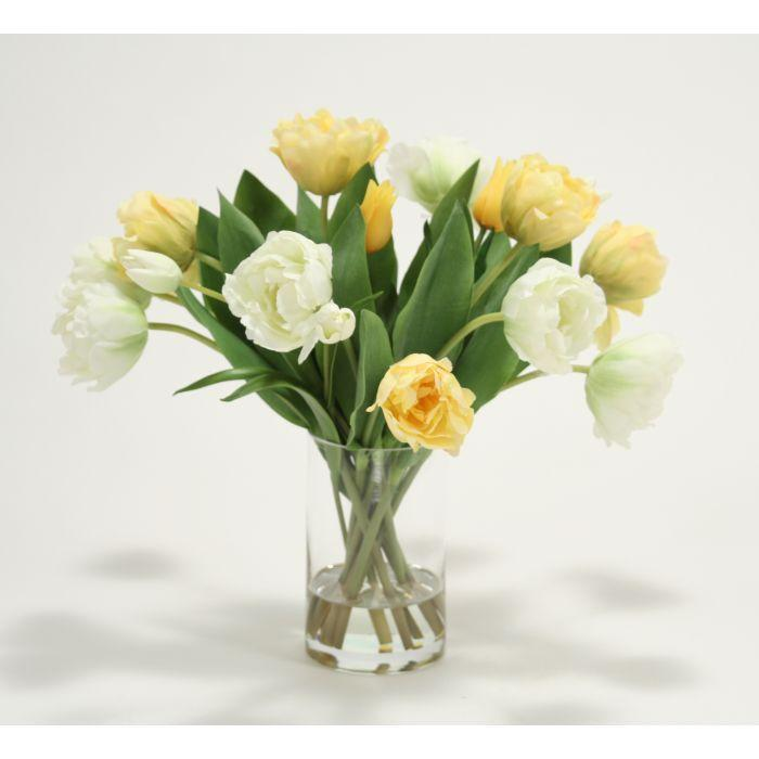 Waterlook® Mixed Yellow and Cream Green Tulips in Tall Glass Cylinder