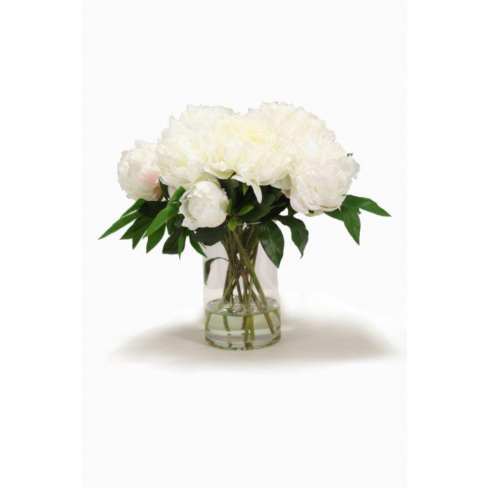 Waterlook® White Peonies in Round Glass Cylinder