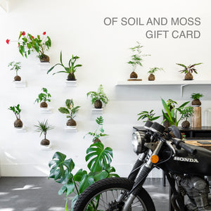 OF SOIL AND MOSS Gift Card