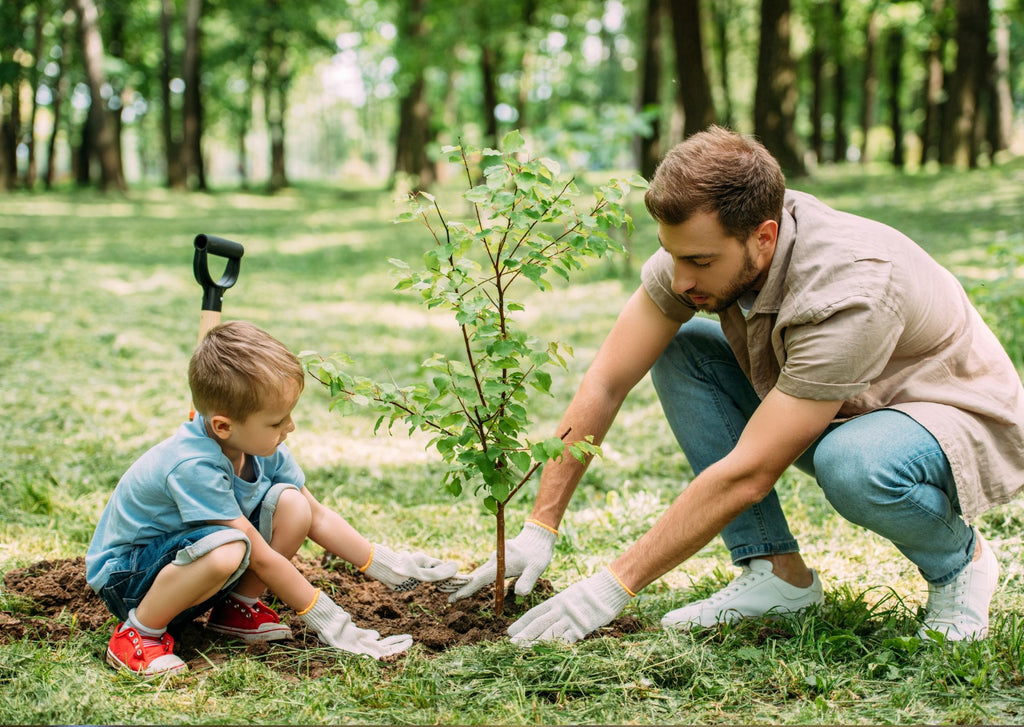 teaching a child to be eco friendly in 2021