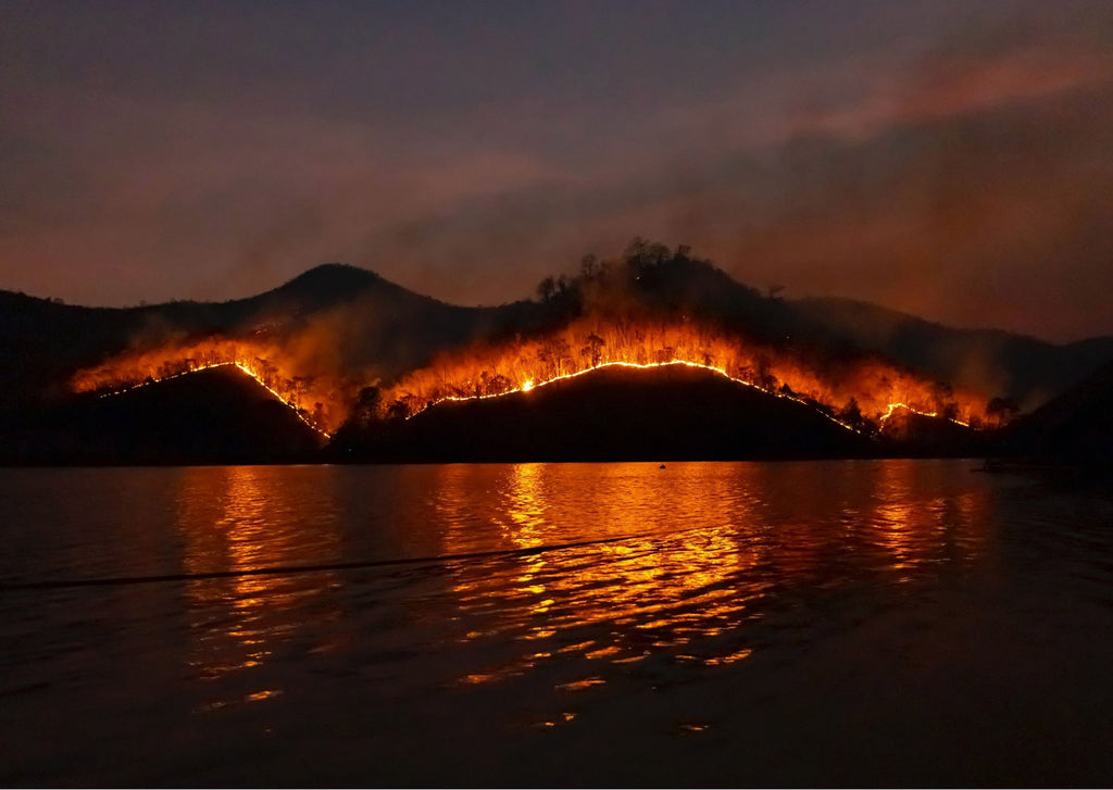 Wildfires in Australia beside a lake