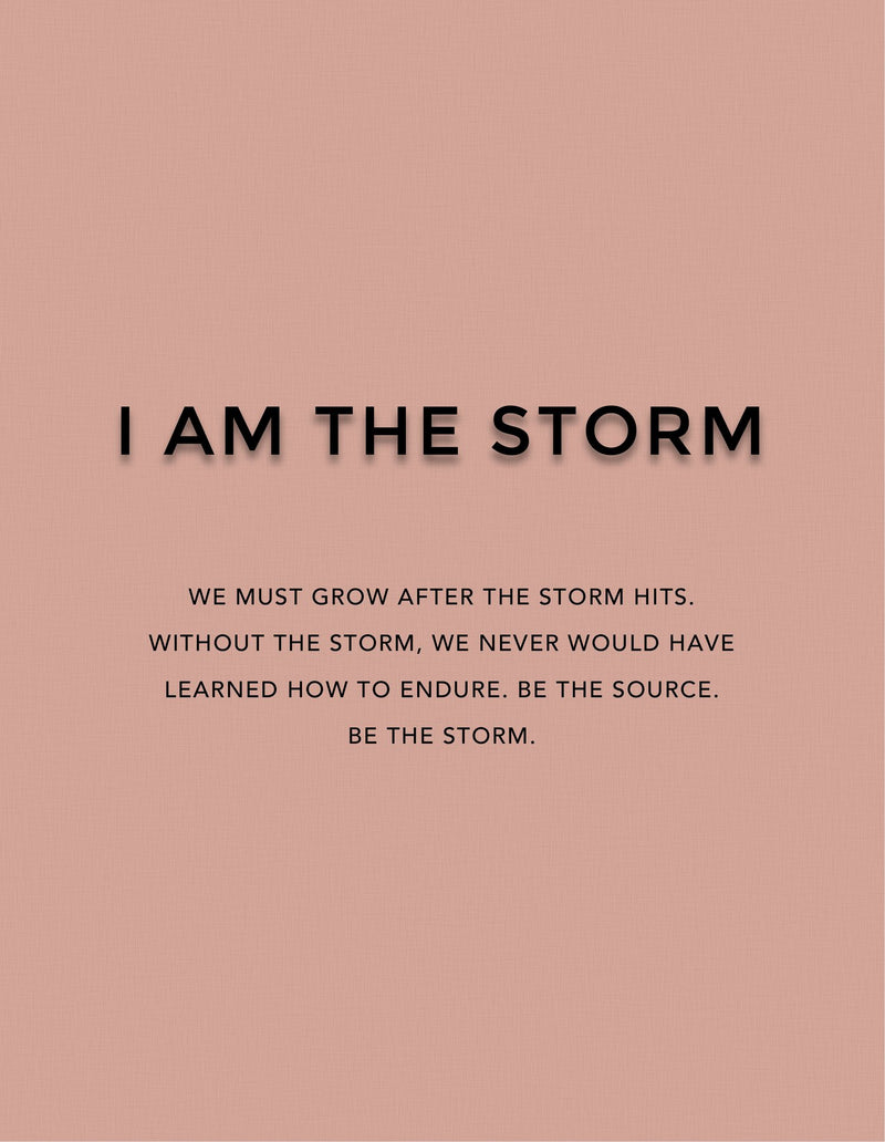 I Am the Storm - Dark Brown Matte Liquid Lipstick - Briseis Beauty