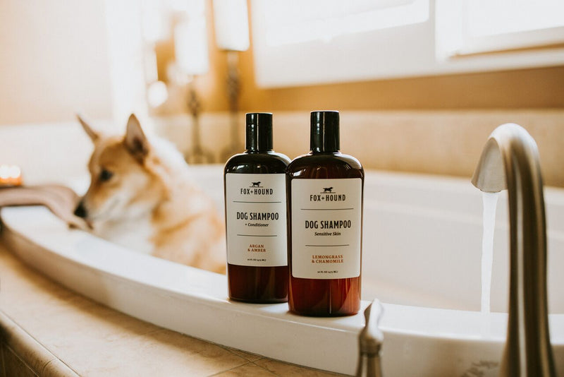 Natural Dog Shampoo with Conditioner for Sensitive Skin - Briseis Beauty