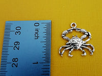 crab charms 4