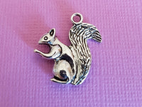 squirrel charms