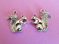 squirrel charms 3