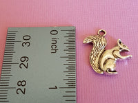 squirrel charms 4