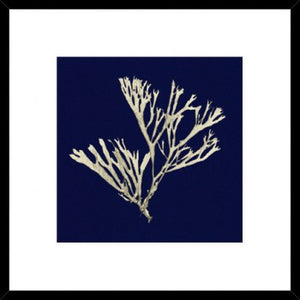 ACADIA SEAGRASS PRINT WITH NAVY BACKGROUND