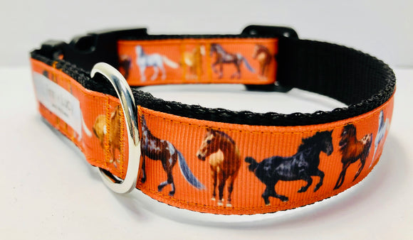 Sable Island - Finn & Lucy Premium Pet Gear