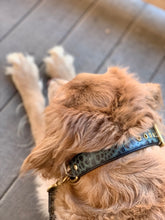 Load image into Gallery viewer, Genuine Leather Dog Collar: The Saint -Yves Collar
