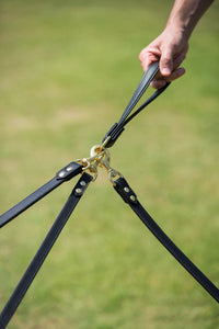Ascot Grip with multiple dog leads