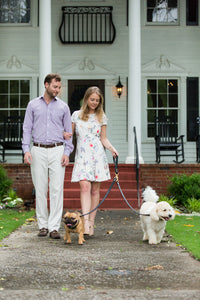 The Ascot Grip For Dog Leads