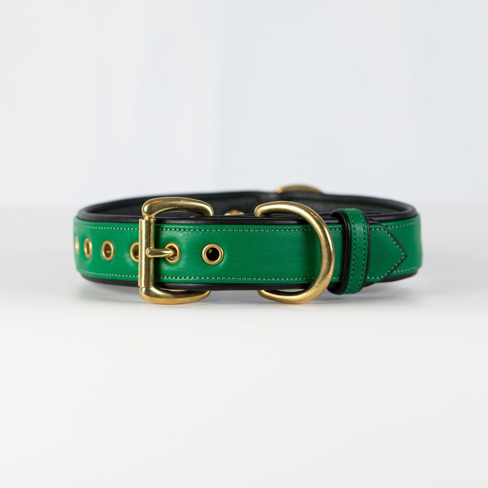Emerald and Black Dog Collar