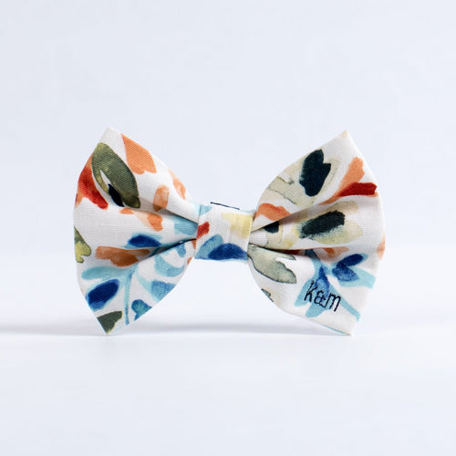 Splash of Color Bow Tie