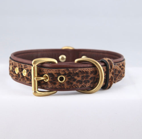 Genuine Leather Dog Collar: The Monroe Collar