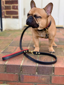 Genuine Leather Dog Collars: The Dooley Collar