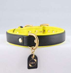 Genuine Leather Dog Collars: The Monaco Collar