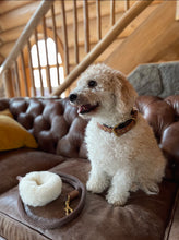 Load image into Gallery viewer, Genuine Shearling, Leather, & Nylon Rope Leash For Dogs: The St. Moritz