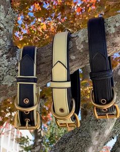 Genuine Leather Dog Collar: The Regents Collar