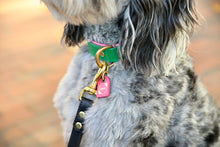 Load image into Gallery viewer, Genuine Leather Dog Collars: The Pip Collar LIMITED EDITION - Emerald & Hot Pink Dog Collar
