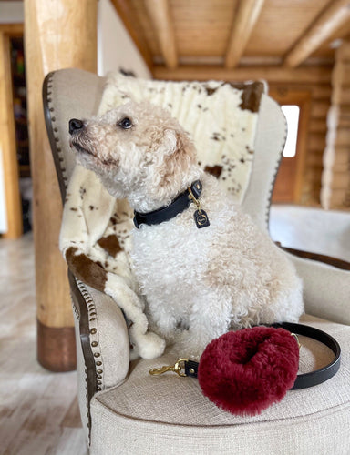 Genuine Shearling, Leather, & Nylon Rope Grip For Dogs: The Méribel