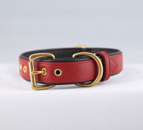 Genuine Leather Dog Collar: The Athens Collar