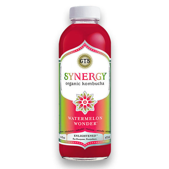 GT'S SYNERGY WATERMELON WONDER 16 FL OZ