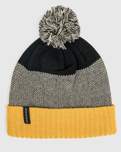 Load image into Gallery viewer, United By Blue Birdseye Pom Beanie