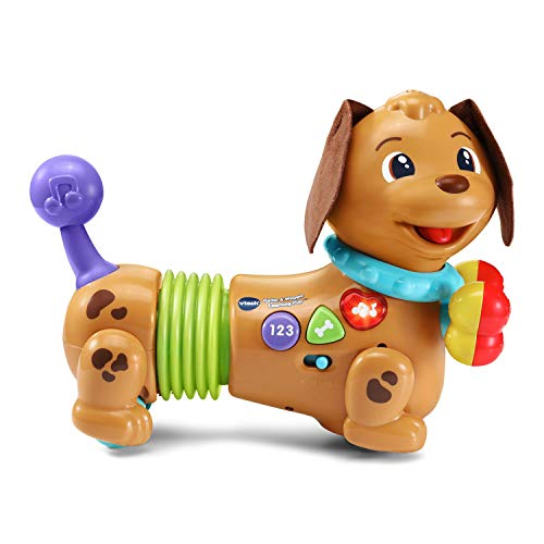 VTech Rattle & Waggle Learning Pup,Multicolor Via Amazon