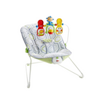 Fisher-Price Baby's Bouncer Geo Meadow Via Amazon