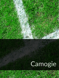 Camogie Optimized Hashtag Report